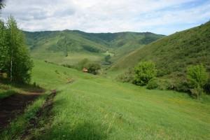 Вид на участок с одного из краев - в сторону села, которое скрыто рельефом