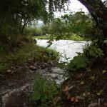 Место слияния речки Арбанак с Сарасой, рядом с участком туркомплекса