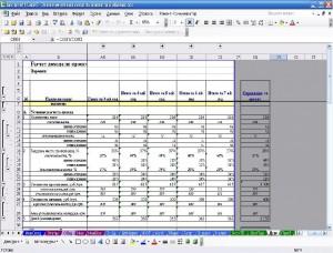 Экономическая модель проекта